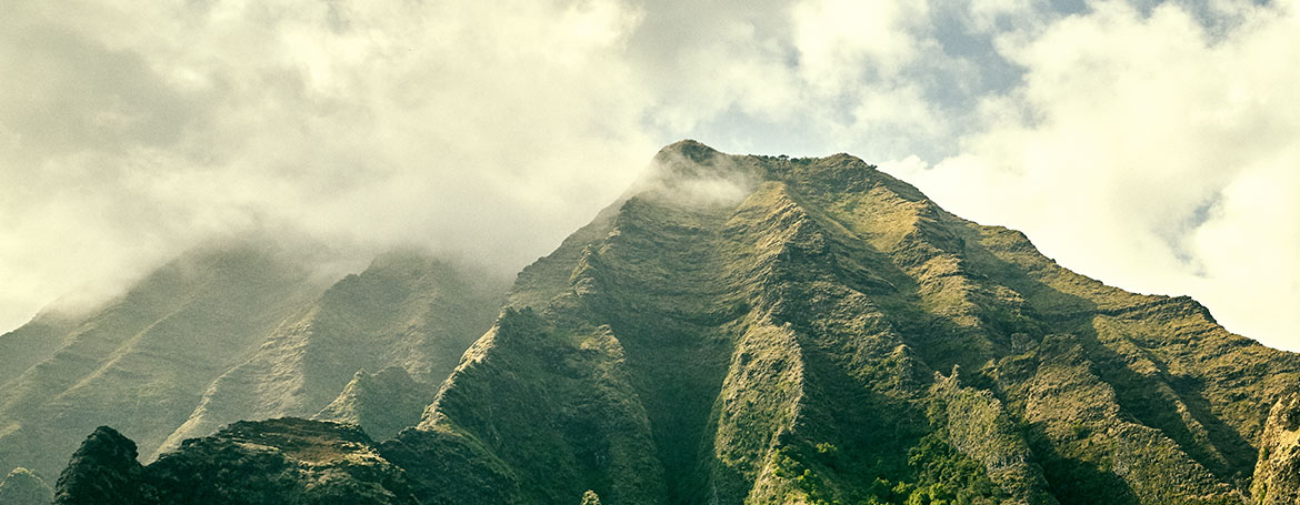Looking up at the Mountains in Kauai.