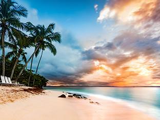 Una hermosa playa. Una hermosa joven descansando en una hamaca frente al mar mientras mira fijamente su tableta con WiFi.