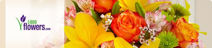 1800 Flowers Rapid Rewards Southwest Airlines