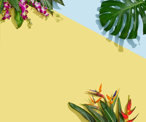 Flip flops, beach bag, sunglasses and plants native to Hawaii